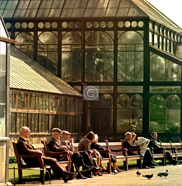 Botanic Gardens, 1978. Much the same photo could be taken today.