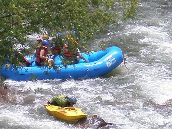 Raft 6.jpg