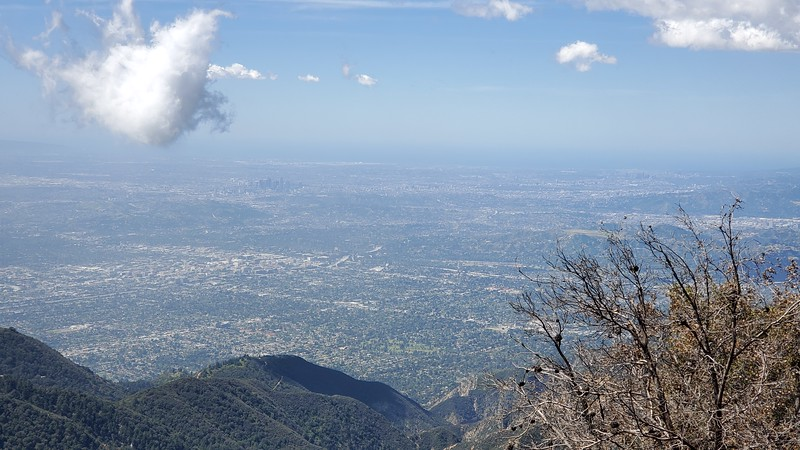 20190412026-Mt. Wilson Toll Road.jpg