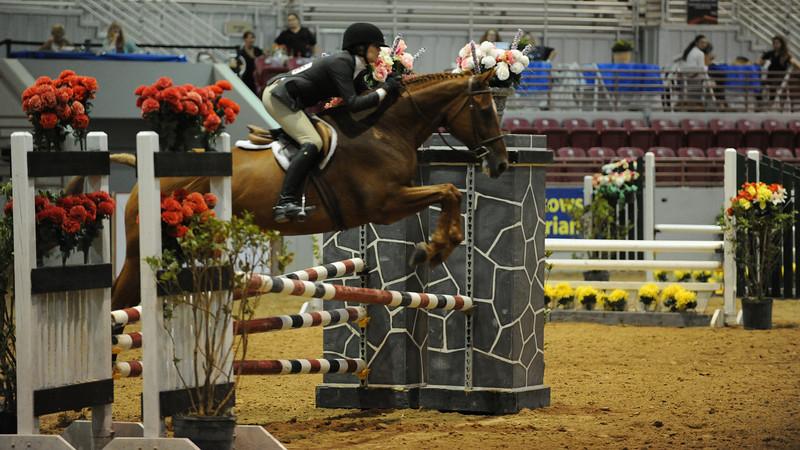 Horse show (30).jpg