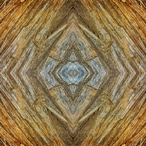 Mirror16-0019 16x16.jpg