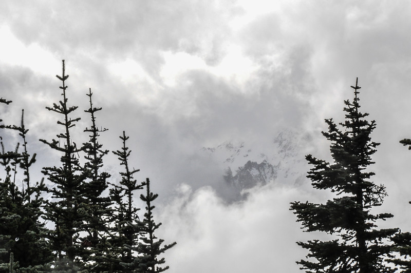 HurricaneRidge WA_2016-7.jpg