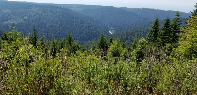 Looking over the Redwood Creek valley - you can see the Redwood creek gravel bar near the middle of the photo.  We camped two night on the gravel bar in different spots.