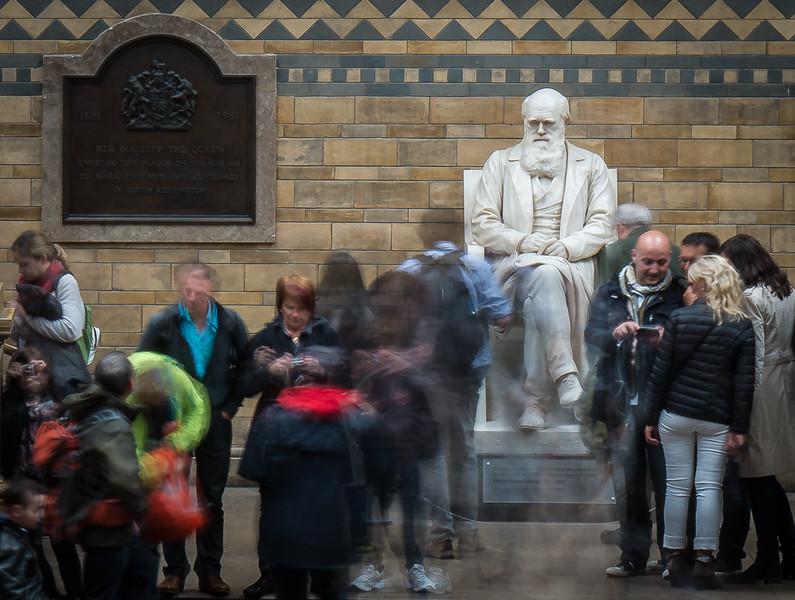 Charles Darwin contemplates Evolution