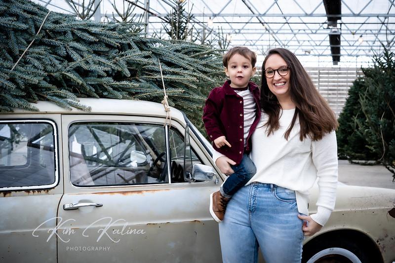 Tree Car-00298.jpg