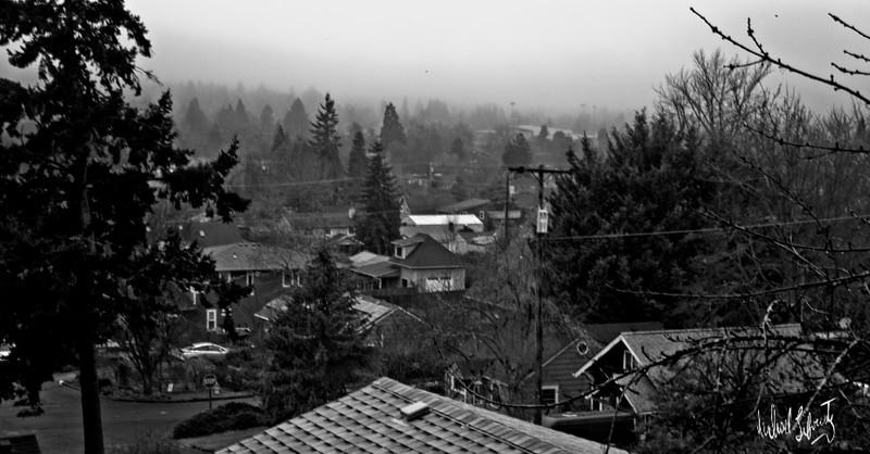 valley fog b&w.2020