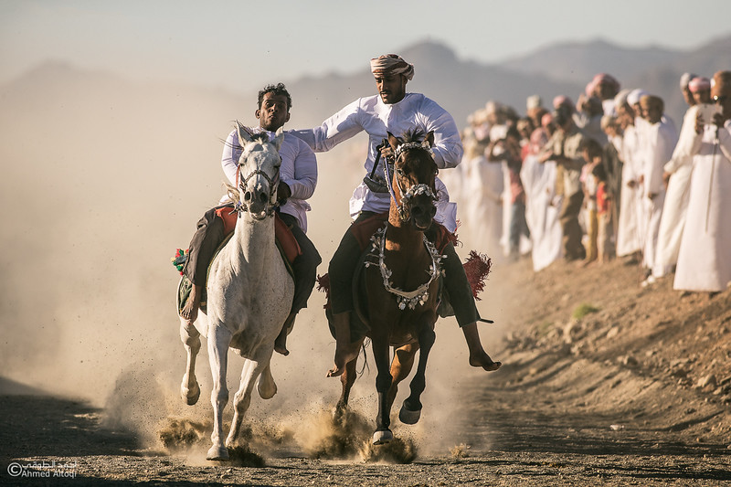 IMGL8411-Edit-2- Camel Race.jpg