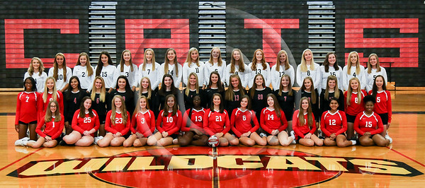 2019 LHHS Volleyball