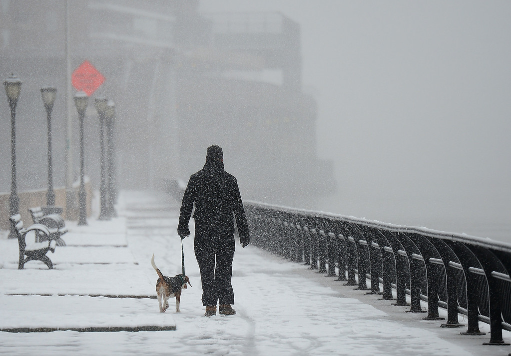. A man walks his dog as a snow storm hits New York, March 8, 2013. AFP PHOTO/EMMANUEL  DUNAND/AFP/Getty Images