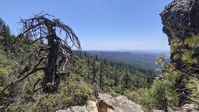 Arnold Ridge Trail