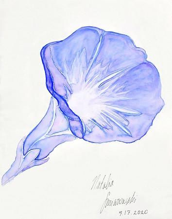 Natalia Smiarowski Art