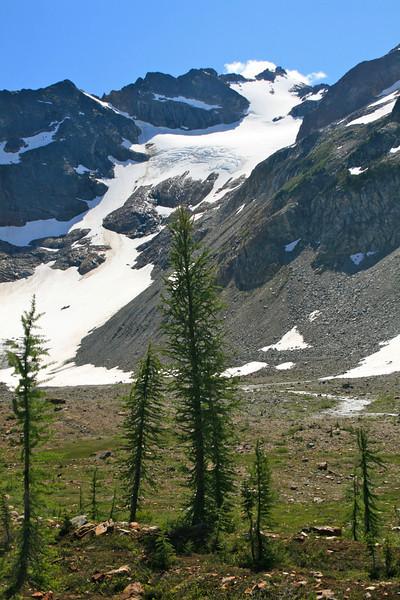 Chiwawa Summit and Larch Trees.