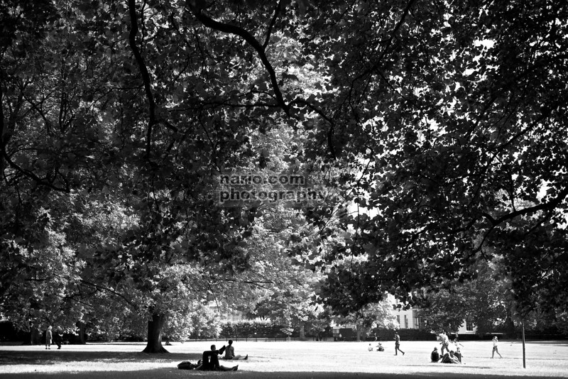 """Regal Daydreaming"" in B&W (Royal Gardens, London, UK)"