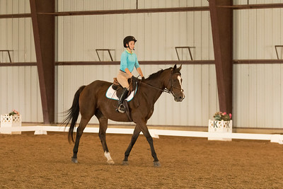 Horse 609