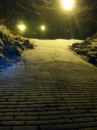 Solo Snow - 20100107