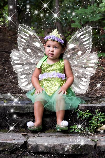 795A1907 fairy.jpg