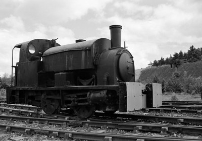 Beamish Railway