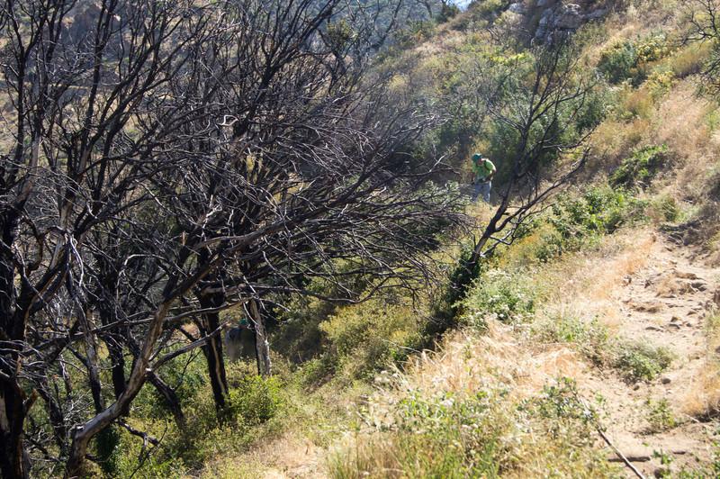 20120630033-Trailwork, MWBA, Sunset Ridge.jpg
