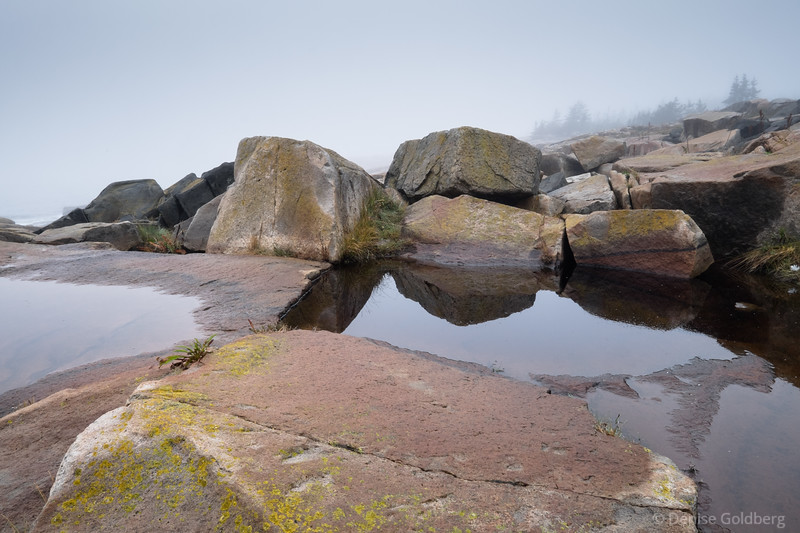 sculpted rocks and reflection on a foggy day at Schoodic