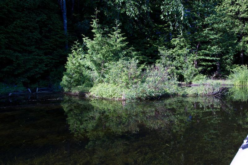 June 11 Stoney Lake Glass_0650.jpg