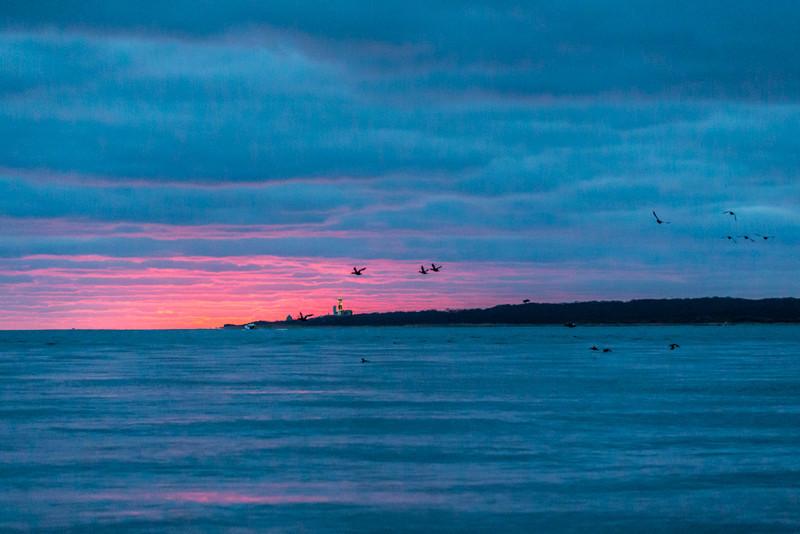 Long Island-112.jpg