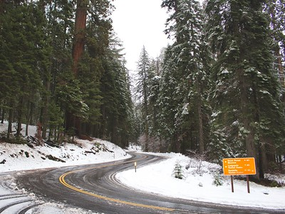 Sequoia National Forest - Three Rivers