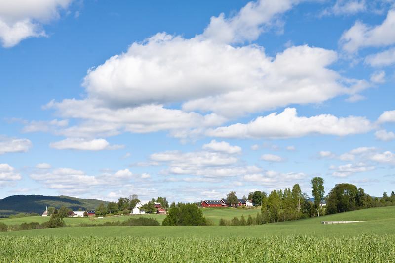 Grashøsting2011-118