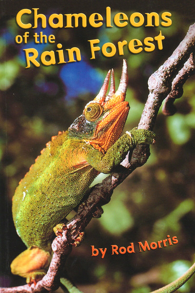 Written and photographed by Rod, this title visits the rain forest to find out about an amazing animal called a chameleon. Find out how the chameleon uses it's secret weapon. Meet its neighbours on the island of Madagascar. This is one title in a guided reading series of 96 chapter books for children aged 7-11.  A signed copy of Chameleons of the Rainforest can be purchased directly from us for $24.99 (+P&P). For more information please contact the Production Manager at info@rodmorris.co.nz