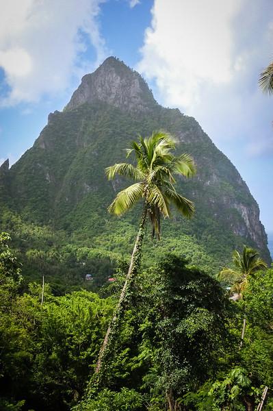 12May_St Lucia-fuji_083.jpg