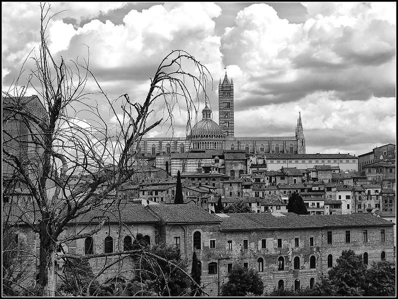2018-06-Siena-855-bn.jpg
