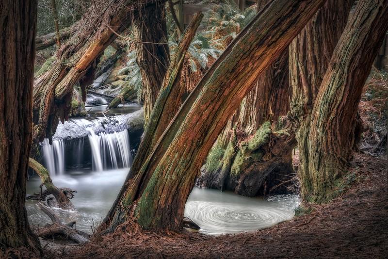The Whirlpool, Sea Ranch, California