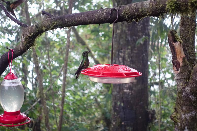 Ecuador-117.jpg