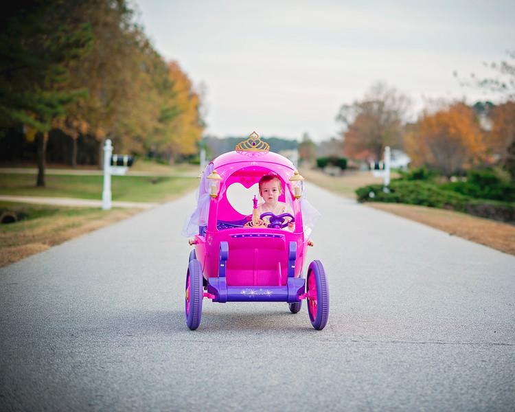 2016 Nov Daily Mom Cinderlla Carriage-2741-Recovered.jpg