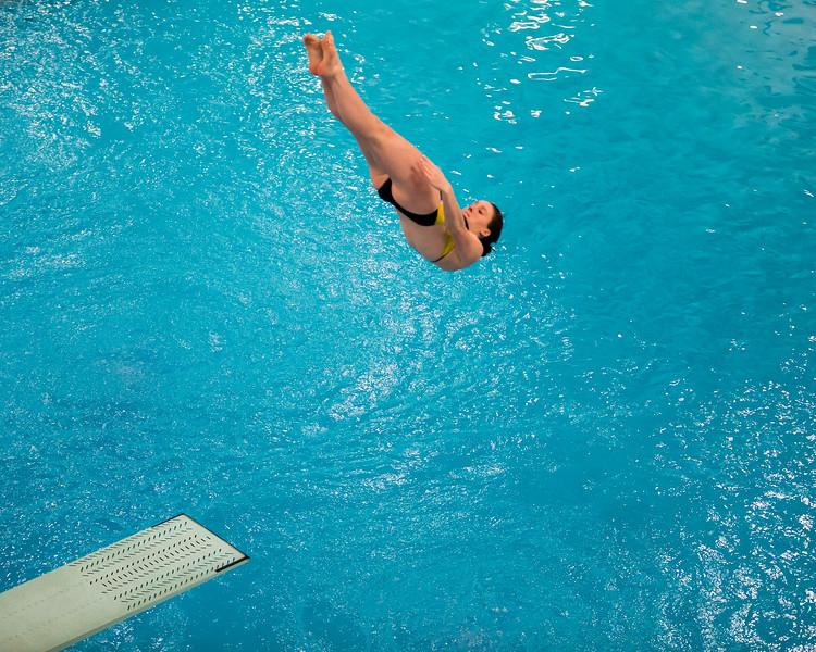 D1 Diving-17.jpg