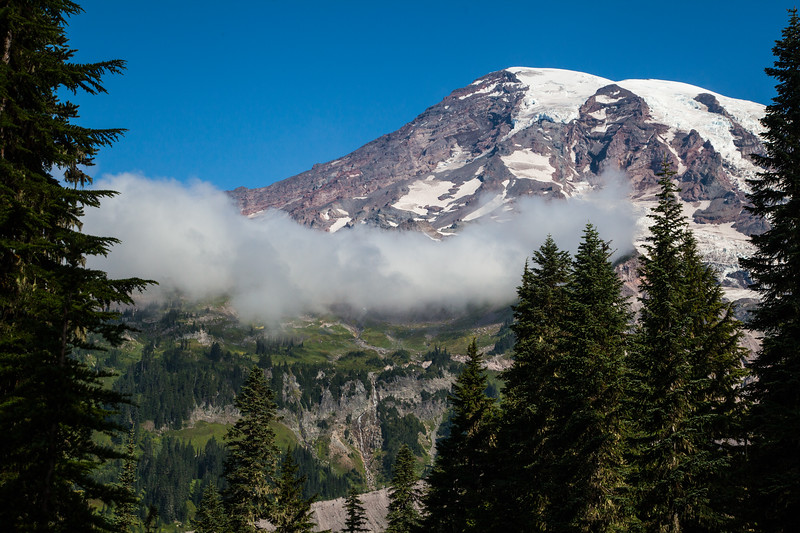 Mount Rainier from the Emmons Vista Trail