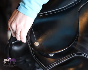 Amerigo: Saddle Fitter Training