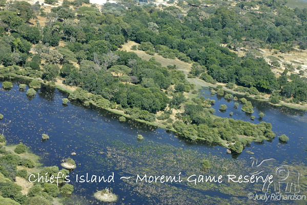 Botswana-Mombo Camp Scenery
