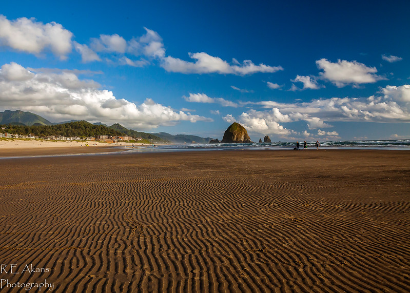 Cannon Beach 7330 (1 of 1).jpg
