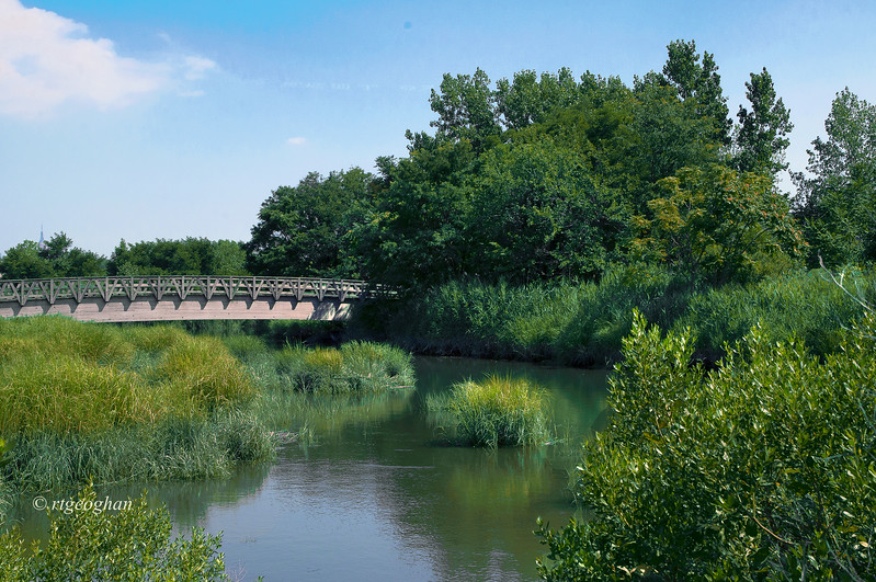 July 22_Mill Creek Marsh_0913.jpg