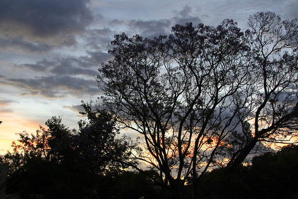 Sunset - 19 Third St, Bicton - 4th December 2012