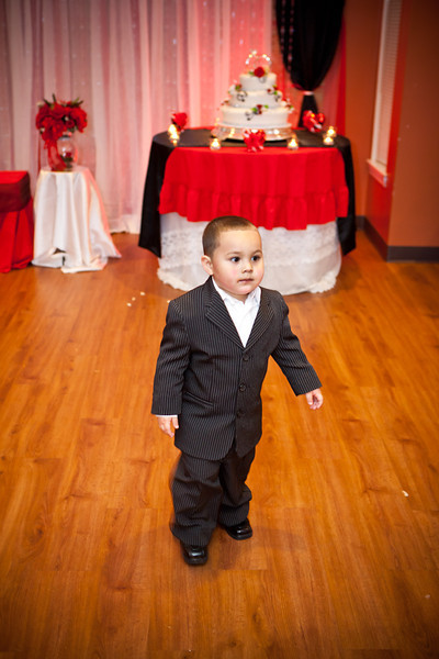 Lisette & Edwin Wedding 2013-330.jpg