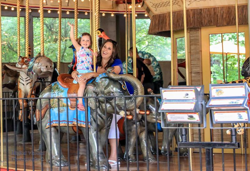 2016-07-17 Fort Wayne Zoo 534LR.jpg