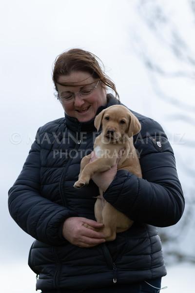 Weika Puppies 24 March 2019-6621.jpg