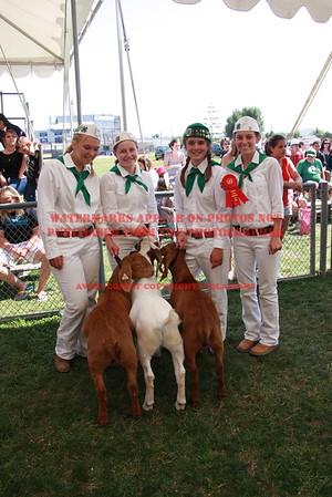 2012 LHVCF Goats