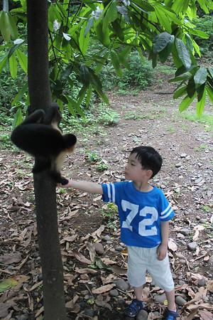 Costa Rica Again 6/2011