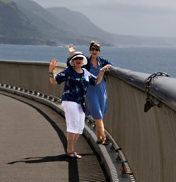 A full zoom on the new coastal bridge