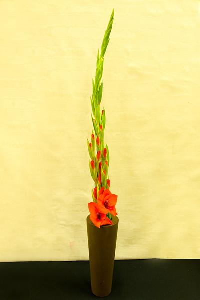 20150826 Flower Show-2210.jpg