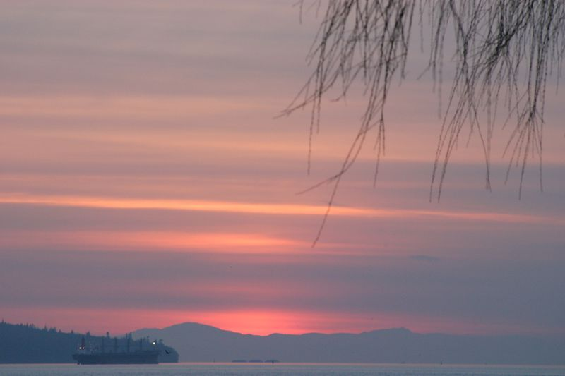 Vancouver - Feb 2005 091.JPG