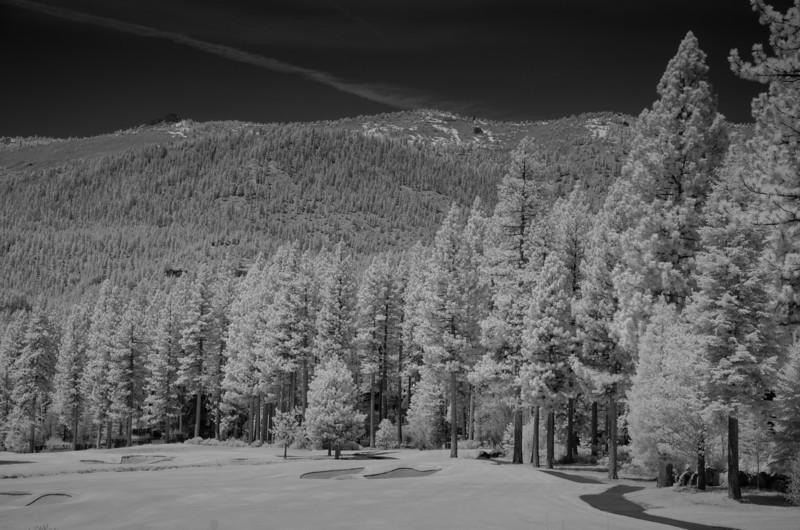 tahoe-2006.jpg