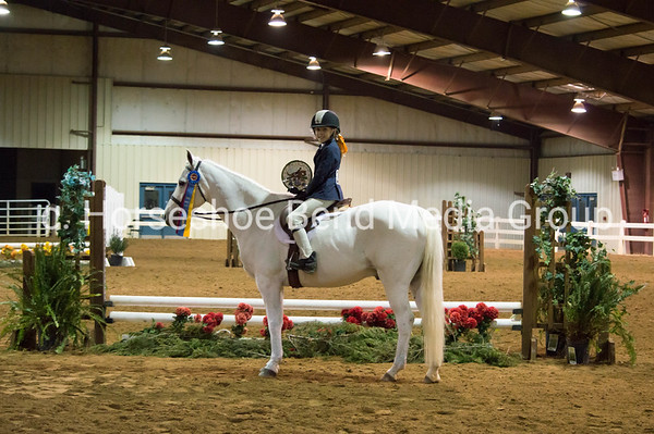 2019 SWVHJA 31st Anniversary Horse Show -- Sunday -- East Complex